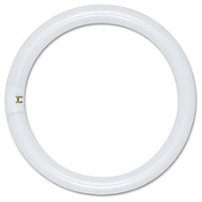 Satco T9 Circle Fluorescent Tube White