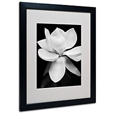 Trademark Global Magnolia Matted Framed Print