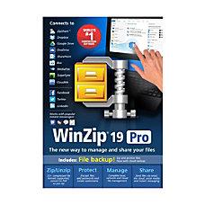 WinZip 19 Pro Download Version