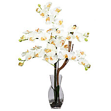 Nearly Natural Phalaenopsis Silk Flower Arrangement
