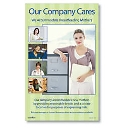 ComplyRight Breastfeeding At Work Poster English