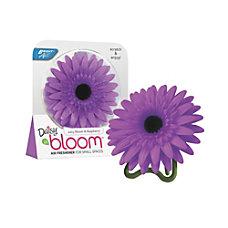 BRIGHT Air Daisy In Bloom Air