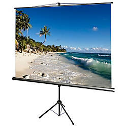 AccuScreens 800070 Manual Projection Screen 85