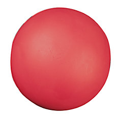 Champion Sports Coated Foam Ball 4