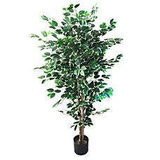 Pure Garden 60 H PVC Ficus