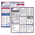 Federal & State Poster Kits