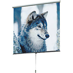 Draper Luma 207205 Manual Projection Screen