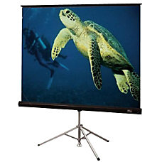 Draper Diplomat Tripod Projection Screen
