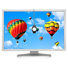 NEC Display MultiSync PA302W SV 30
