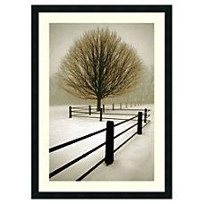 Amanti Art Solitude Framed Art Print