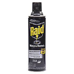 Raid WaspHornet Killer Spray Spray Kills