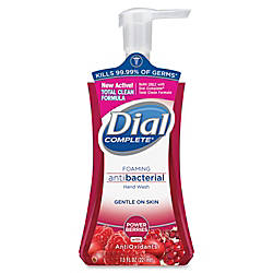 Dial Complete Antioxidants Hand Wash Power
