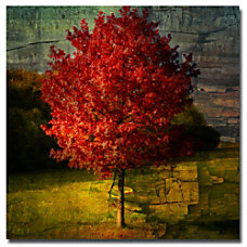 Trademark Global Autumn Red Gallery Wrapped