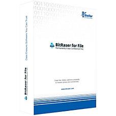 BitRaser for File Download Version