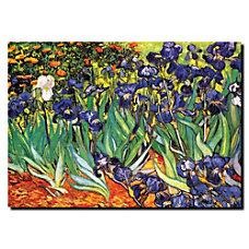 Trademark Global Irises At Saint Remy