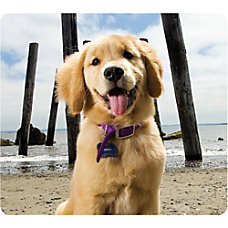 Fellowes Mouse Pad Puppy Multicolor Rubber