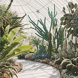 6 Indoor Gardens to Explore This Winter