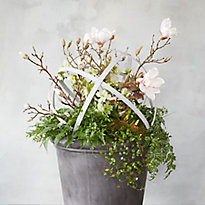 A Spring Ahead Planter