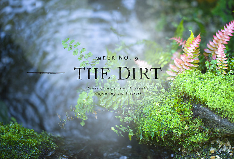 The Dirt | 2014 | week no. 9