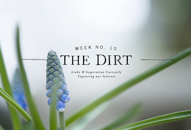 The Dirt | 2014 | week no. 10