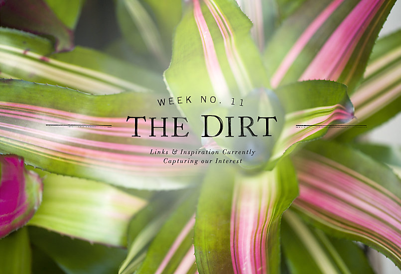 The Dirt | 2014 | week no. 11
