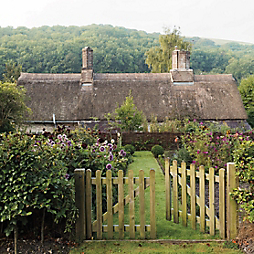 Gardenista in Residence: An English Cottage Garden