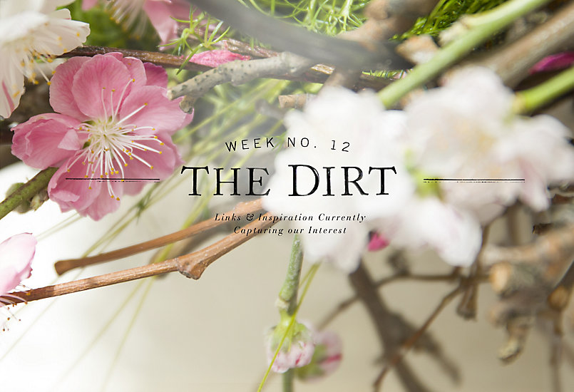 The Dirt | 2014 | Week no. 12