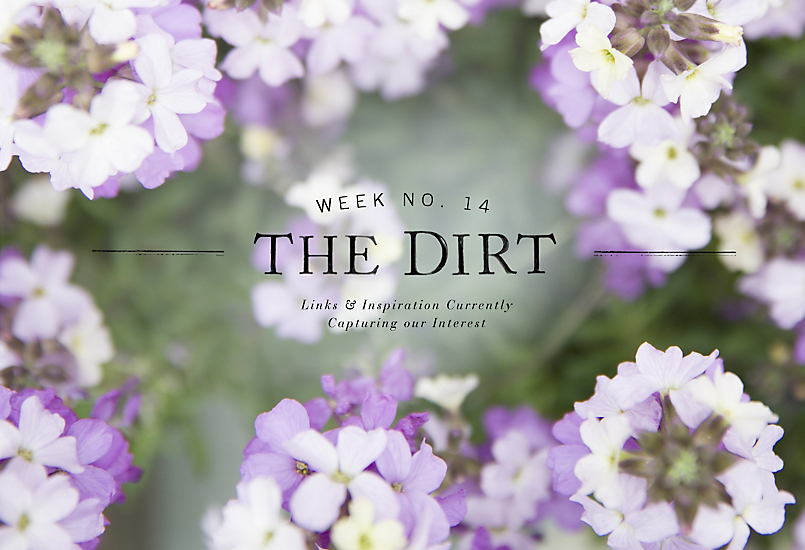 The Dirt | 2014 | Week no. 14
