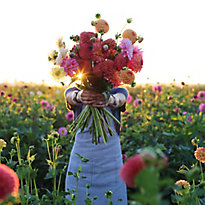 In the Field with Floret Flowers