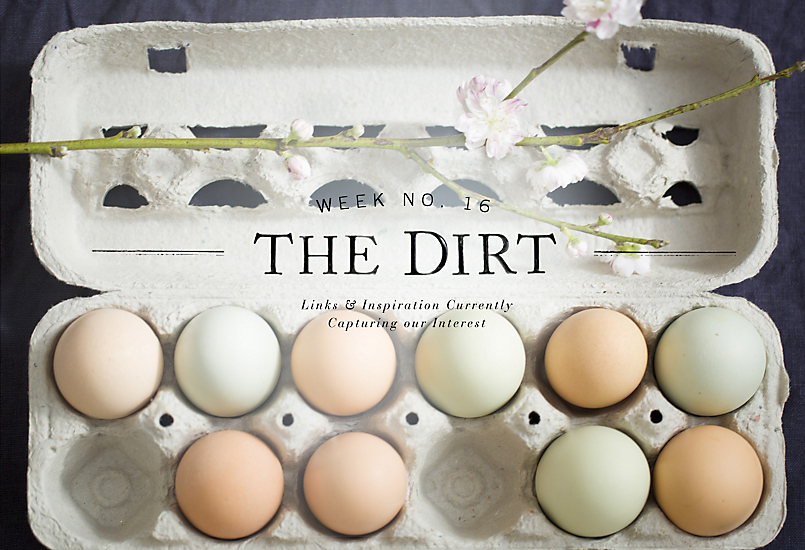 The Dirt | 2014 | Week no. 16