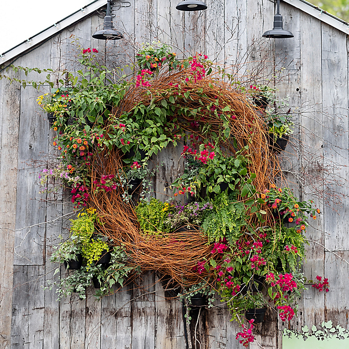 A Living Wreath Installation with Kaitlin Dodds