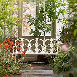 Behind the Scenes: Summer Garden + Home Book Plants