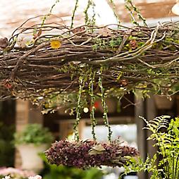 Summer Garden Chandeliers