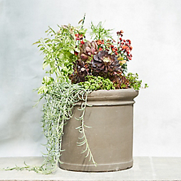 A Planter to Start Summer