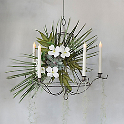 A Tropical Chandelier