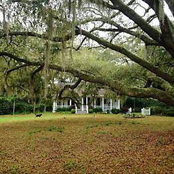 Where We've Been: Charleston