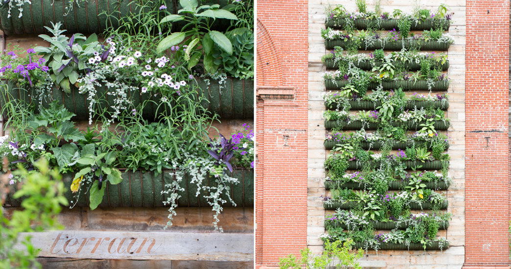 Living Walls for Summer | The BLOG at Terrain