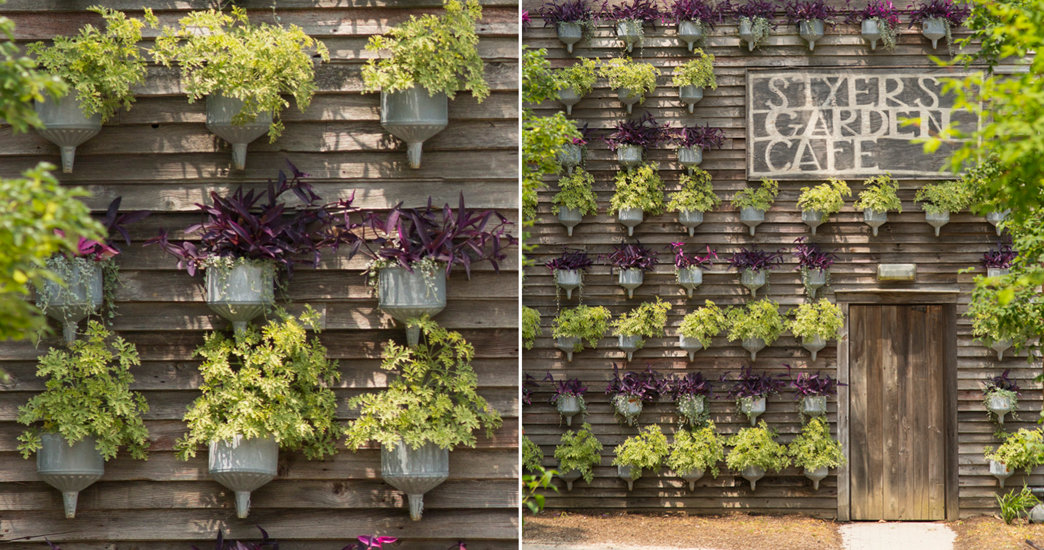 Exceptionnel Living Walls For Summer. Categories: Grow, Our Gardens
