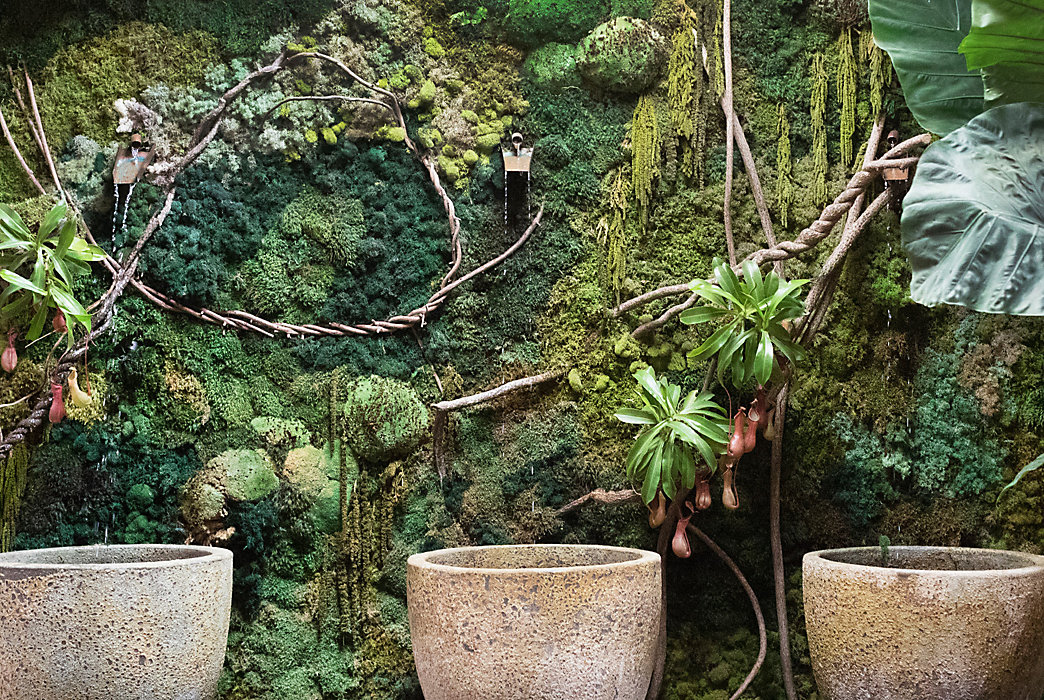 Behind the Scenes: Moss Walls of Styer\'s and Westport | The BLOG at ...