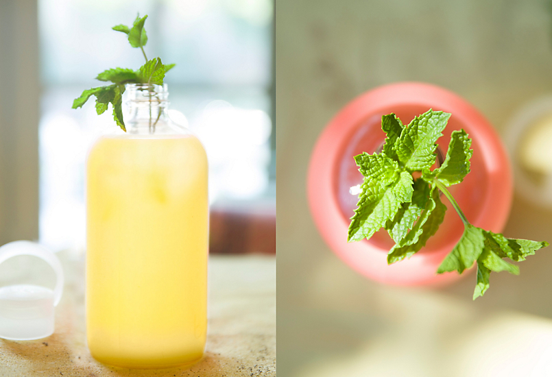 Summer Cooler: Herb Infused Water