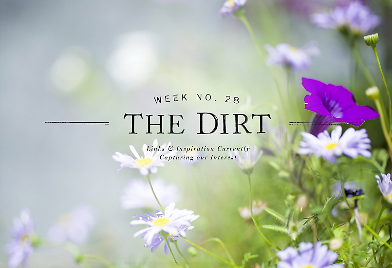 The Dirt | 2014 | week no. 28