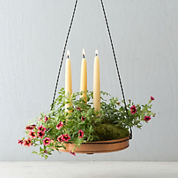 How To: Hanging Tray Planter