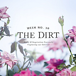 The Dirt | 2014 | week no. 30