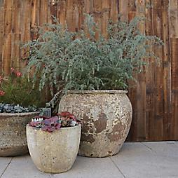 Our Palo Alto Succulent Planters