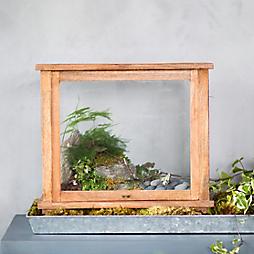 Summer Souvenir Terrariums