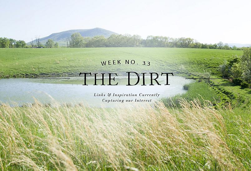 The Dirt   2014   week no. 33