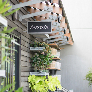 Sneak Peek: Terrain at Devon Yard Store Preview