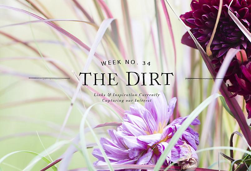 The Dirt | 2014 | week no. 34