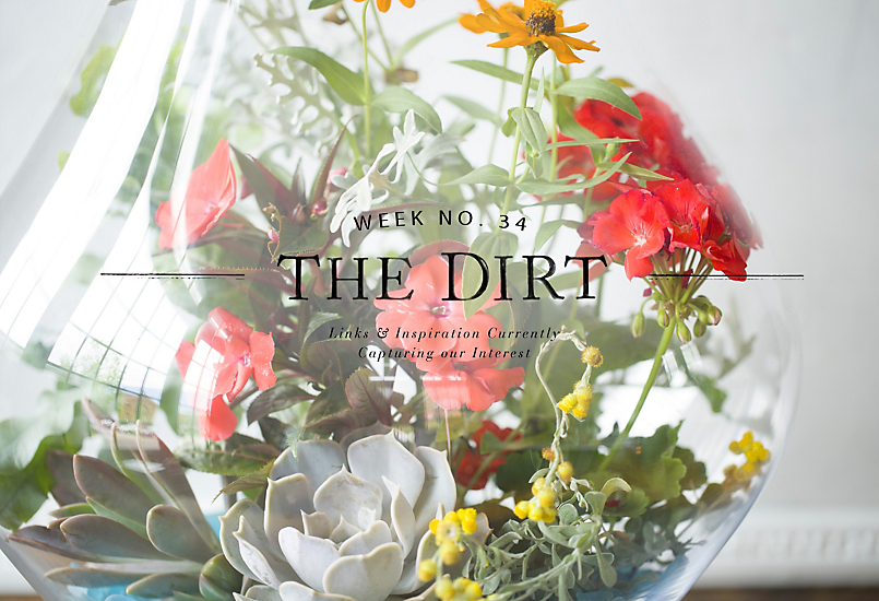 The Dirt | 2014 | week no. 35