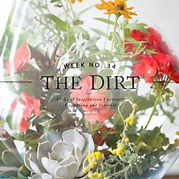 The Dirt | 2014 | week no. 35